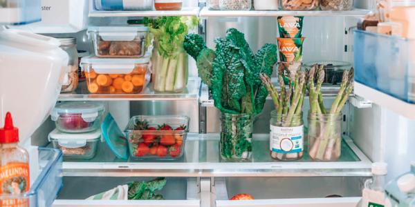 zero waste refrigerator best practices
