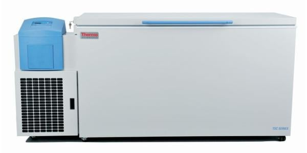 ThermoFisher Ultra Low Freezer