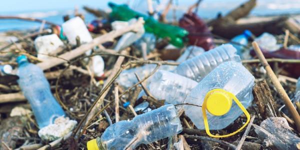 EU Single Use Plastic Ban
