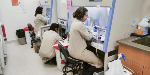 biomedical technicians work in a lab