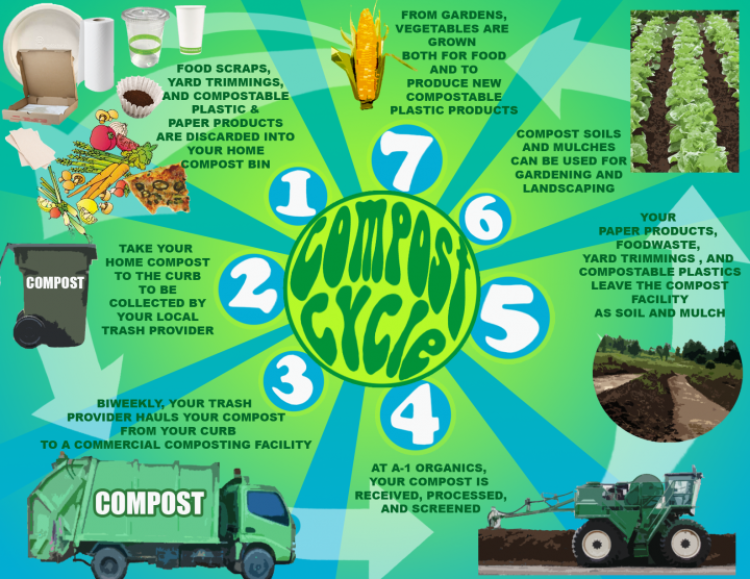 the compost cycle