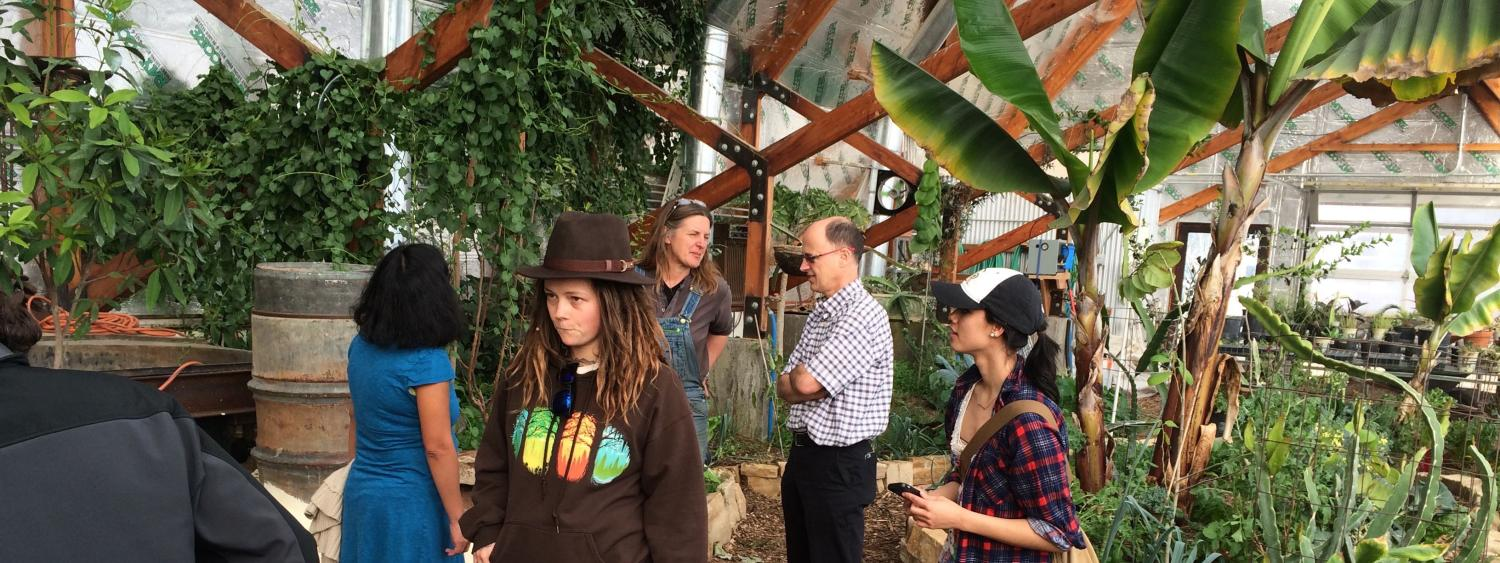 Students in a sustainable greenhouse