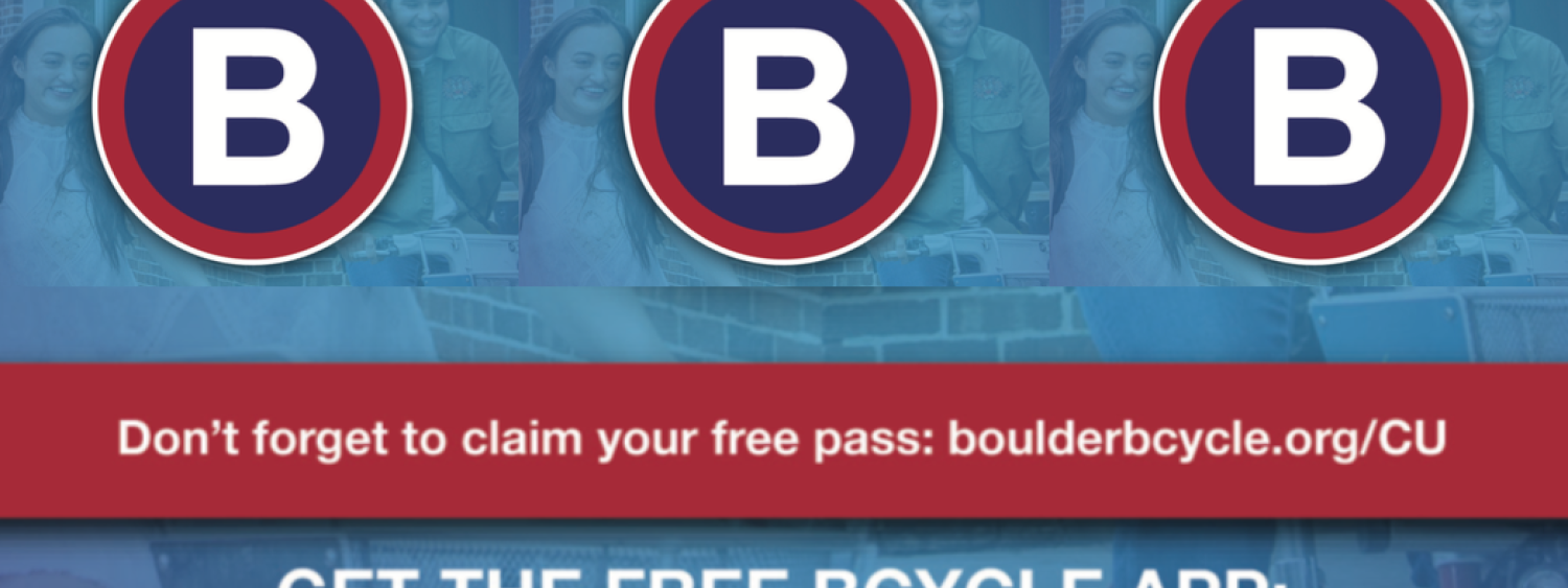 B cycle membership