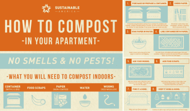composting in your apartment infographic