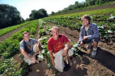Students working on CU farm garden