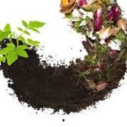 Compost logo