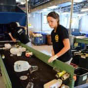 students sort recycling at Recycling Operations Center