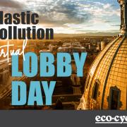 Plastic Pollution Virtual Lobby Day