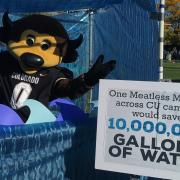 Ralphie promoting campus water savings