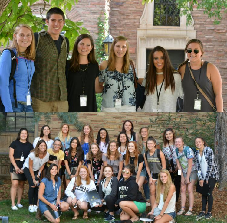 New education undergraduate cohorts