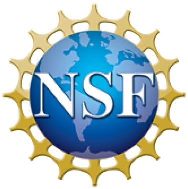 NSF Logo of world with people holding hands circling it.
