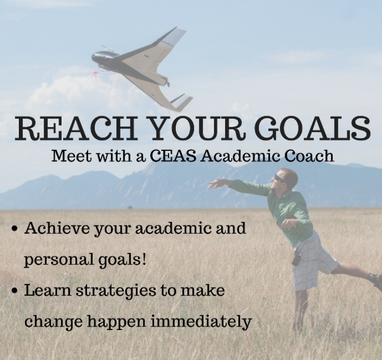 Academic Coaching Flyer