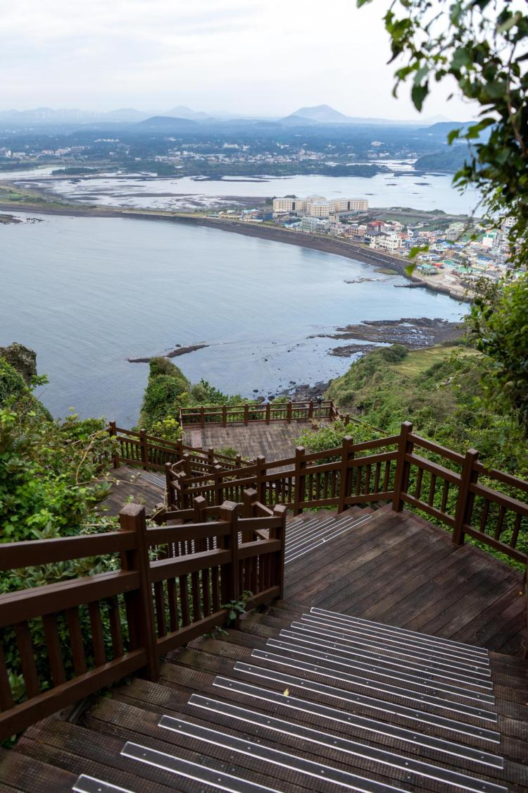 A walkway with a view in Seoul, South Korea. Photo taken by Brayden Shelley.
