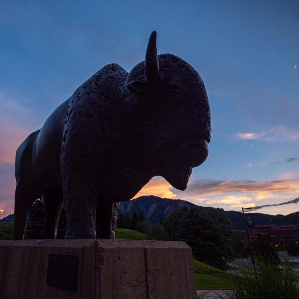 The Ralphie statue outside the Colorado Event Center with a sunset in the background
