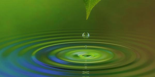 Water droplet off a leaf illustration