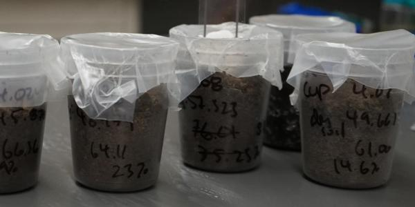 Soil samples with notations on the containers