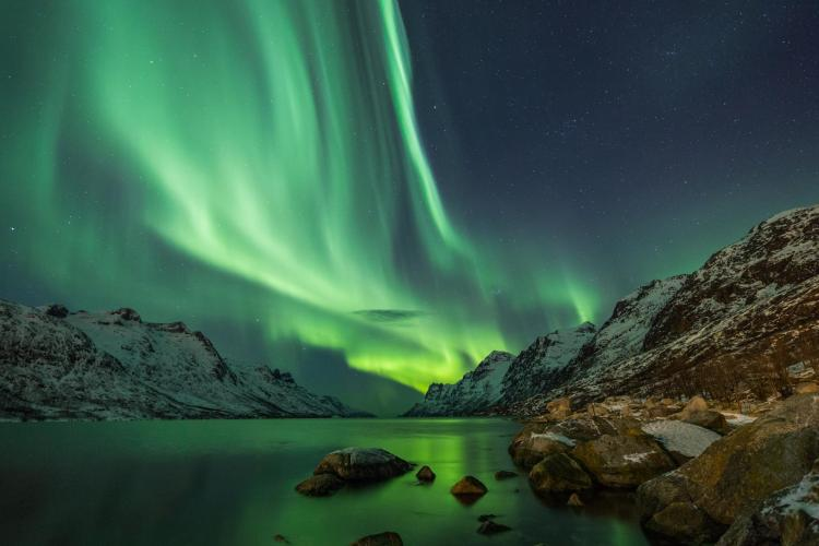 The aurora borealis is seen over winter landscapes