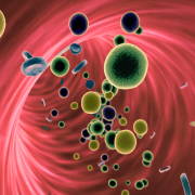 Rendering of blood and cells inside the body.