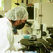 Jared Lewis works in COSINC lab