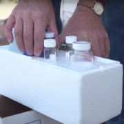 Water samples collected from the communities and stored in a travel container.
