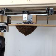 Swarm test