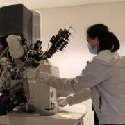 Tomoko Matsuo works at machine.