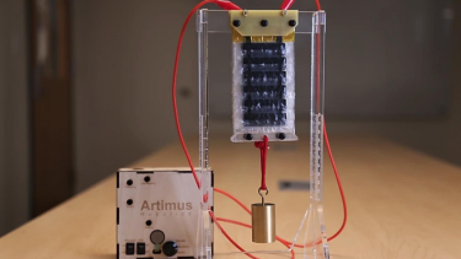 Artimus Robotics