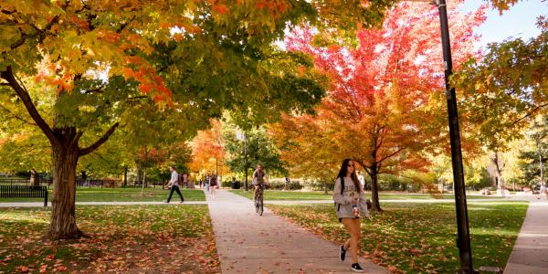 Students walking on campus on a fall day