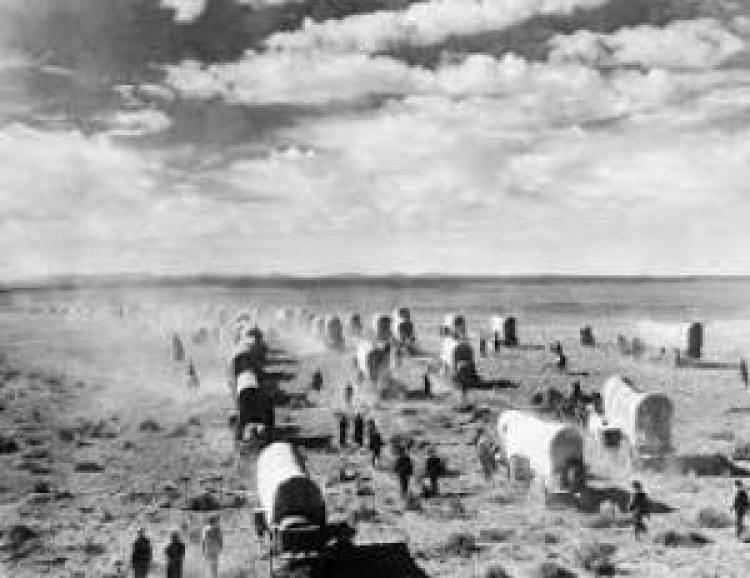 Covered wagons crossing a plain