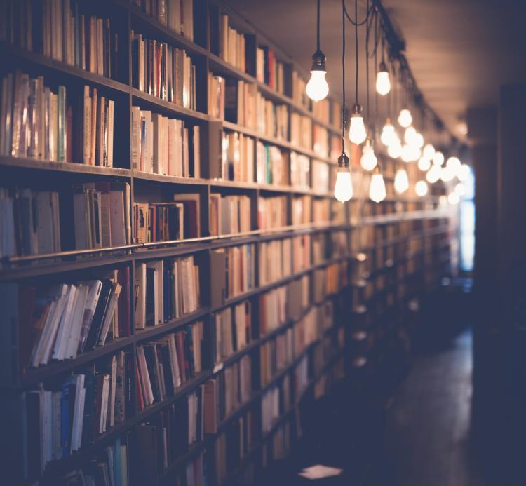 BOOKS AND LIGHTBULBS