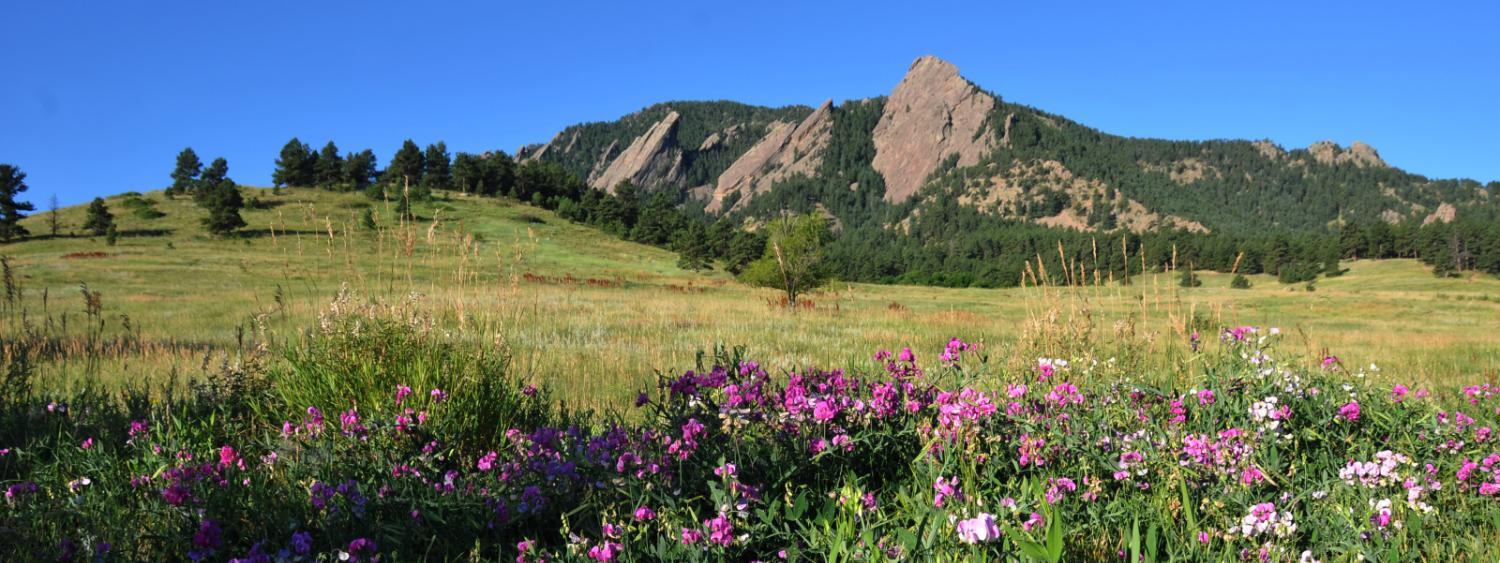 The Flatirons in Spring