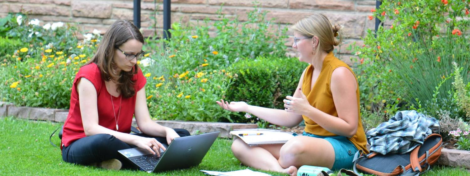 Students studying outside in the grass.
