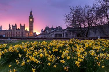 London flower garden