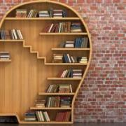 Bookcase shaped like a head
