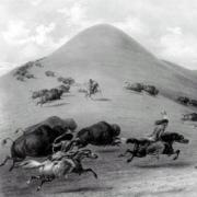 Native Americans on horseback chasing buffalo