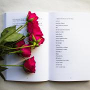 BOOK AND A ROSE