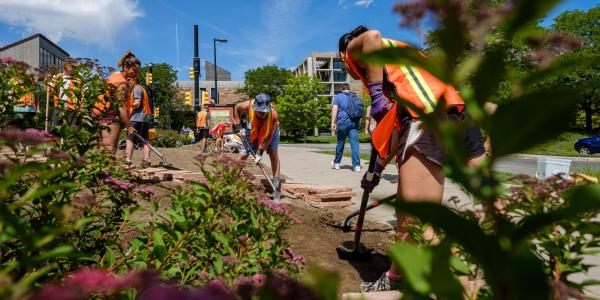 Environmental design students create pollinator garden on campus