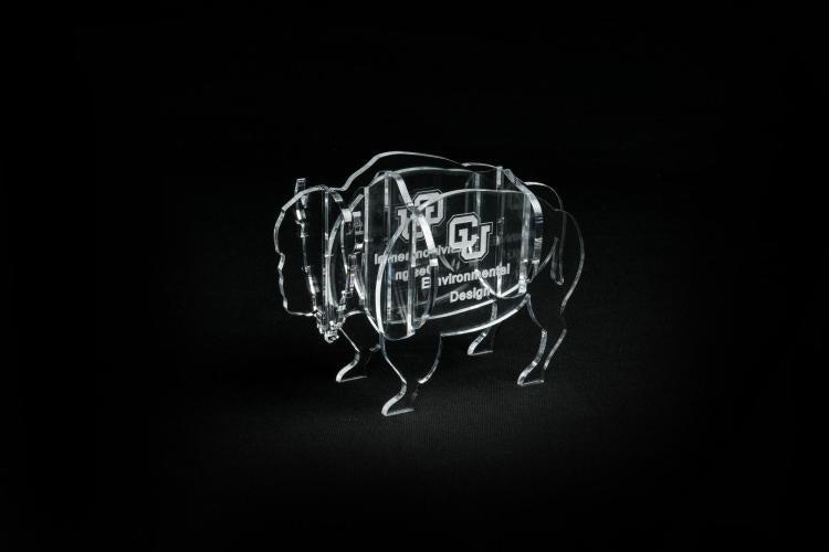 ENVD Acrylic buffalo award