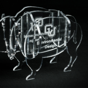 Acrylic buffalo award