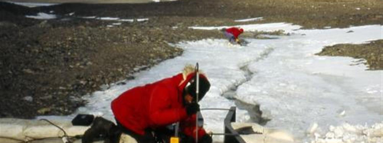 Diane McKnight, McMurdo Dry Valleys, Antarctica