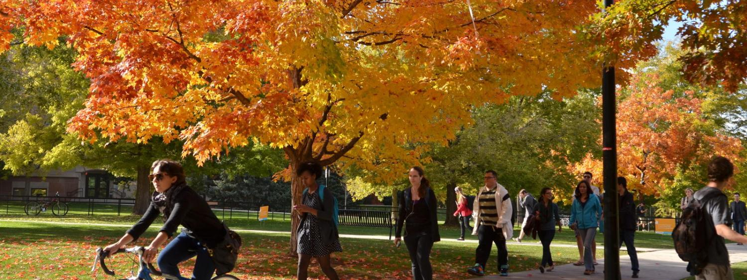 student riding bike on campus with fall trees