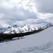 snowy Niwot ridge