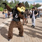 CU Mascot Ralphie poses at event