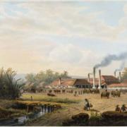 Settler Colonial landscape