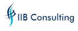 IIB Consulting