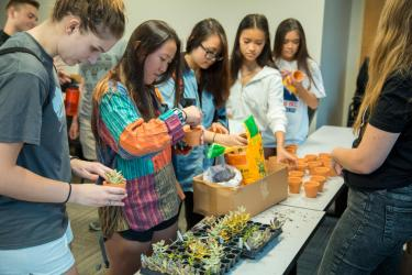 Students plant succulents at a Wellness Wednesday event