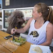 Clare Bradley enjoys lunch outside the Food Court on The Hill with her standard poodle