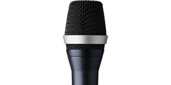 AKG D5 C Professional Dynamic Vocal Microphone