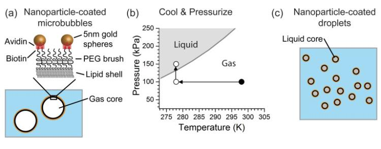 a gold nanoparticle coated nanodrop, which has a core that turns liquid as the temperature decreases and the pressure increases from 100 to 150 kilopascals