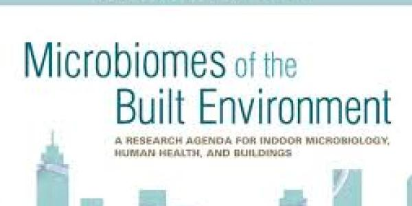Microbiome of the build environment.